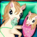 Pony Pregnancy Maternity