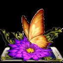 金蝴蝶3D主題
