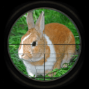 兔子狩猎3D