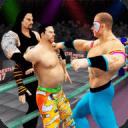 World Tag Team Stars Wrestling Revolution 2017 Pro