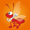 带翅膀的红蚂蚁