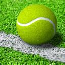 网球王子迷