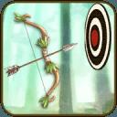 射箭大师 - 箭和弓:罗宾射手