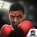 拳击免费游戏的国王