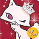 YOO主题-猫咪小姐