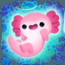 Axolochi 萌宠蝾螈