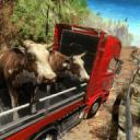 越野驾驶运输卡车