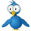 推特联系人