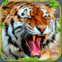 愤怒的老虎模拟器