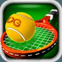 3D网球专业版