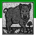 Nonogram/绘图方块4号图片