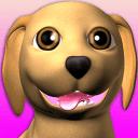 甜说话的小狗:有趣的狗