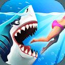 鲨鱼鲨鱼,一脸鲨逼
