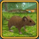 各种可爱的动物模拟游戏♡