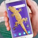 Lizard in phone funny joke