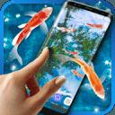 Koi Fish HD Live Wallpaper