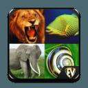 动物百科全书智能应用