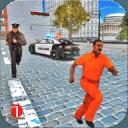 警察 汽车 追 游戏