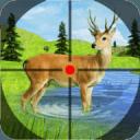 丛林 狙击兵 鹿 狩猎