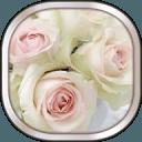 白玫瑰的动态壁纸
