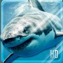 鲨鱼高清 动态壁纸