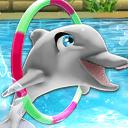 我的海豚秀