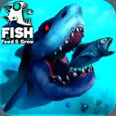 飼料和成長:魚