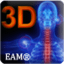 3D人体结构