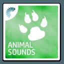 动物音效铃音