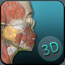 人体解剖学图集
