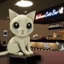 Escape game Cats Bar