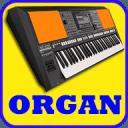 电子琴,钢琴,吉他,小提琴,鼓垫