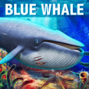 深海游戏(你喜欢吗*^_^*?)