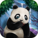Hidden Object Quest: Animal World Adventure