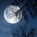 放松之夜 - 大自然的声音