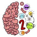 大脑测试2