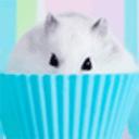 鼠鼠精靈桌面主題—魔秀