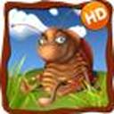 营救昆虫HD