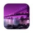 E主题:紫色恋桥
