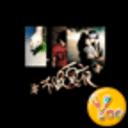 YOO主题-不眠夏夜