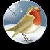 [知更鸟]万能报时器 LOGO-APP點子