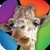 常州淹城野生动物园 生活 App LOGO-APP試玩