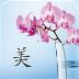 美容化妆品 生活 App Store-愛順發玩APP