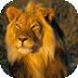 儿童识动物(二) 生活 LOGO-玩APPs