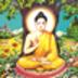 佛教音乐 媒體與影片 App Store-癮科技App