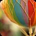 非主流唯美动态锁屏 工具 App Store-癮科技App