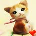 可爱小猫桌面主题—魔秀 工具 App LOGO-硬是要APP