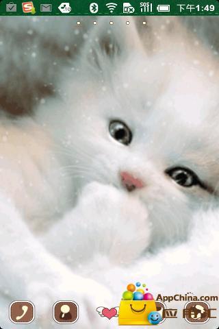 可爱小猫动态壁纸下载
