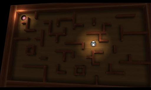 疯狂迷宫3D版 截图1