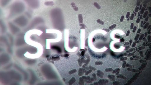 微生物拼接正式版